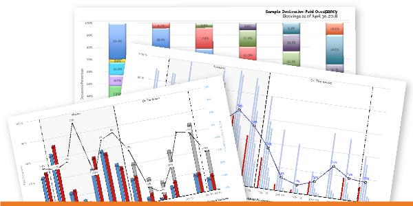 DestiMetrics Property-Level Report Pack Screenshots