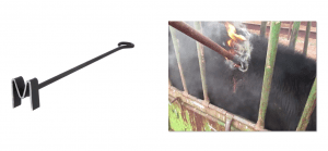 Two images: a branding iron on the left representing your brand, and a cow being branded on the right, representing branding.