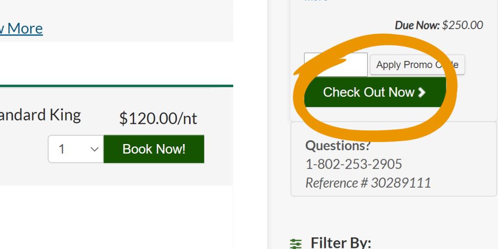 screenshot of checkout button